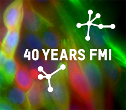 FMI 40th Anniversary